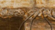 Erosion 4, Clemens Schneider
